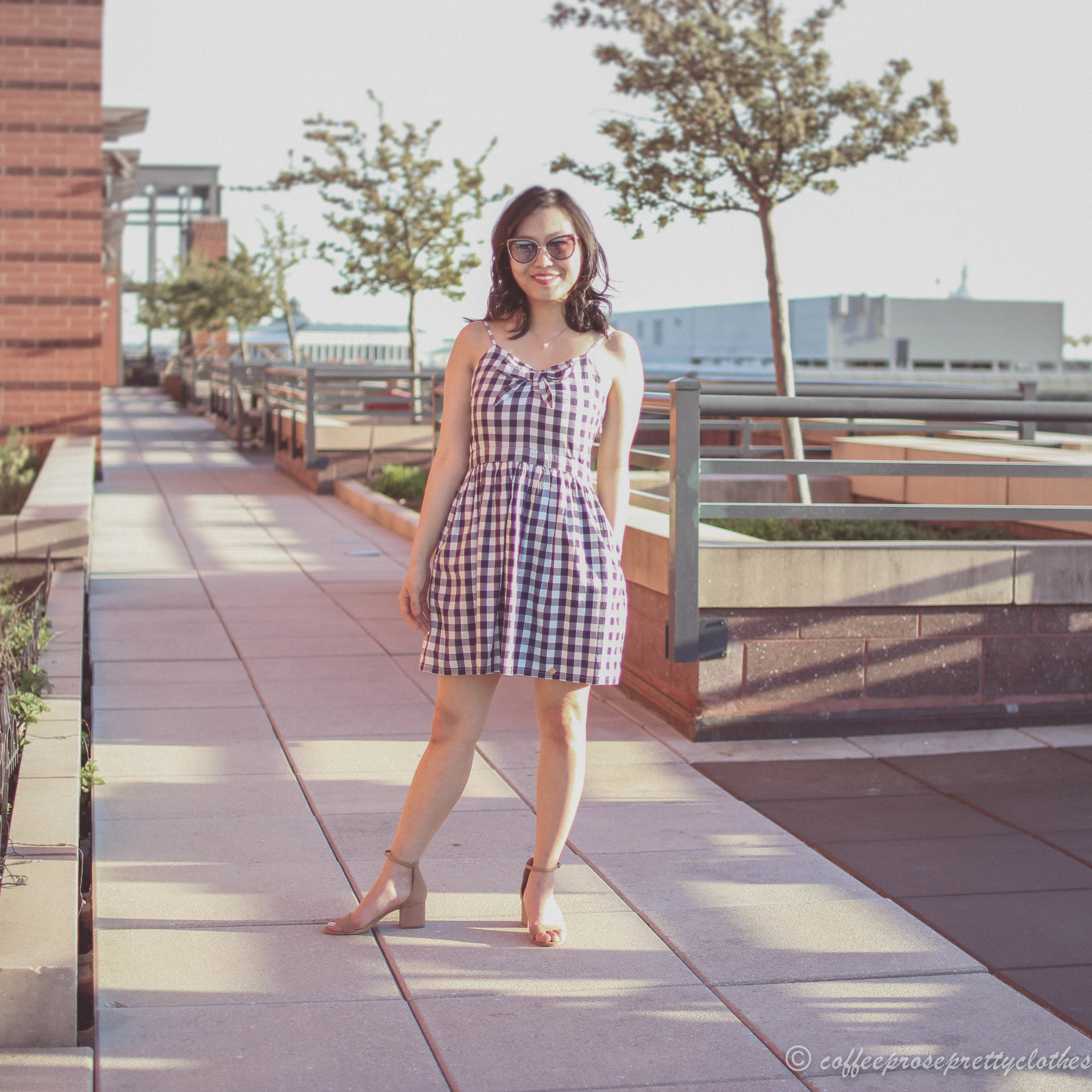 Gingham Dress and Block Heels