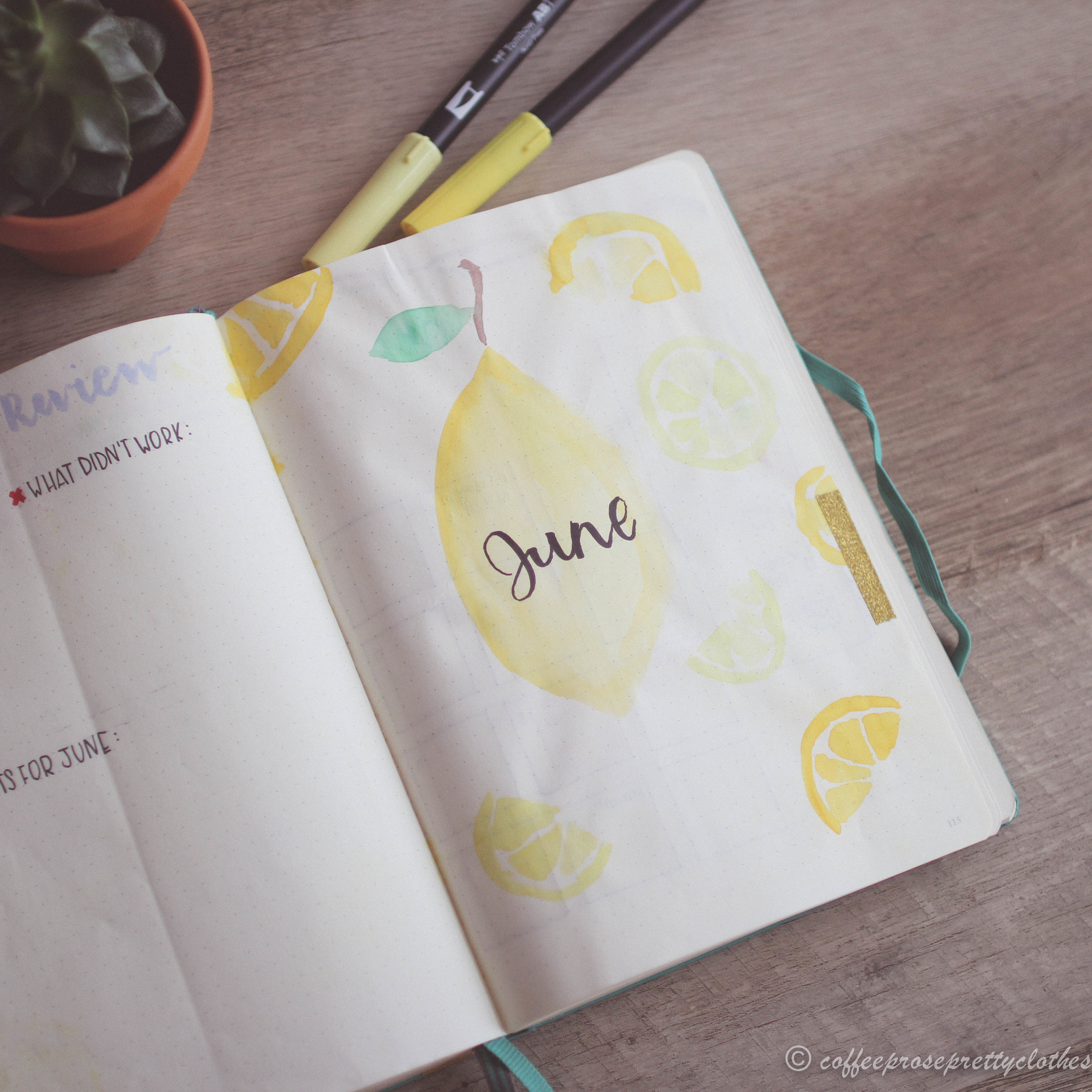 June Bullet Journal Plan with Me