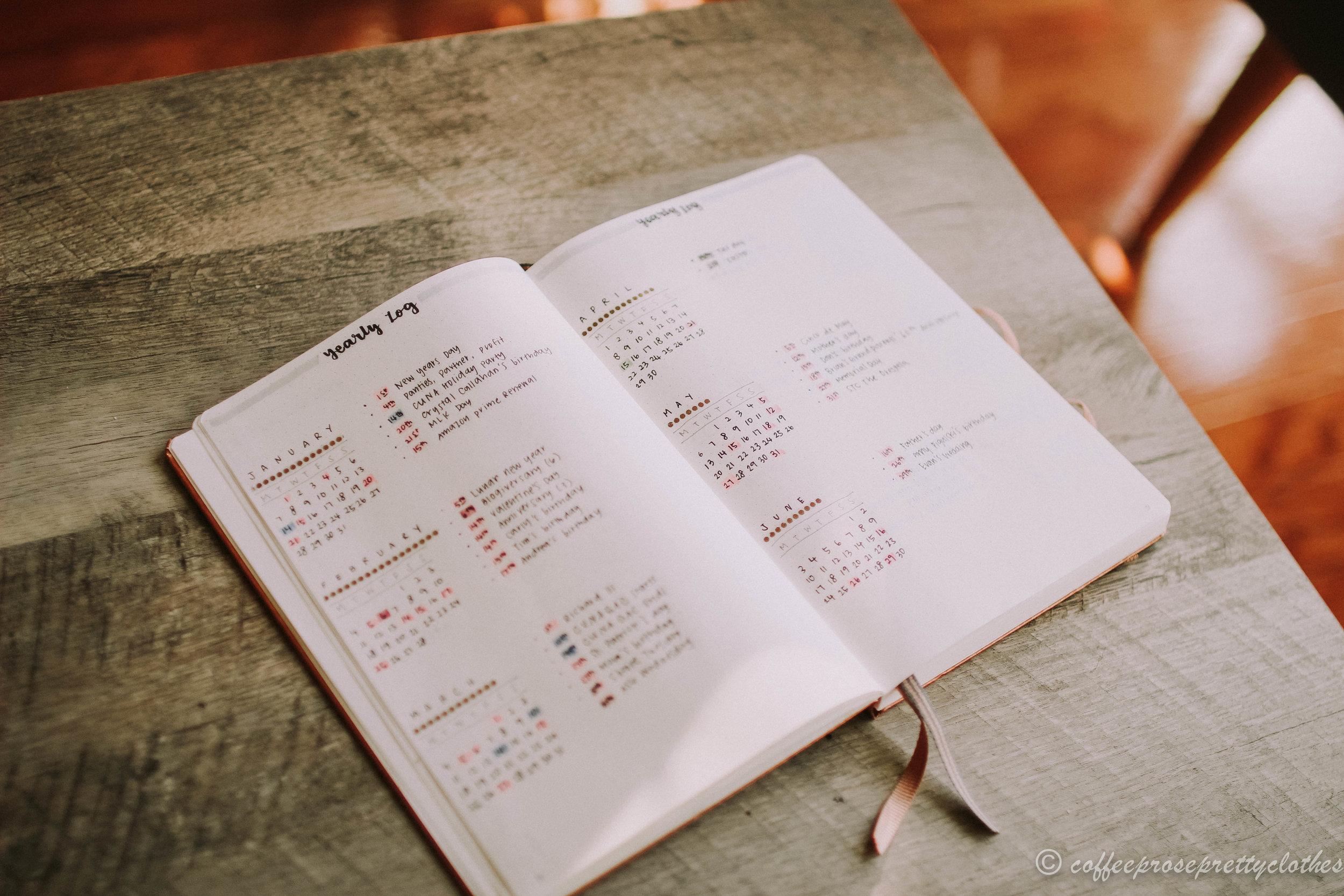 2019 Bullet Journal Setup Yearly log