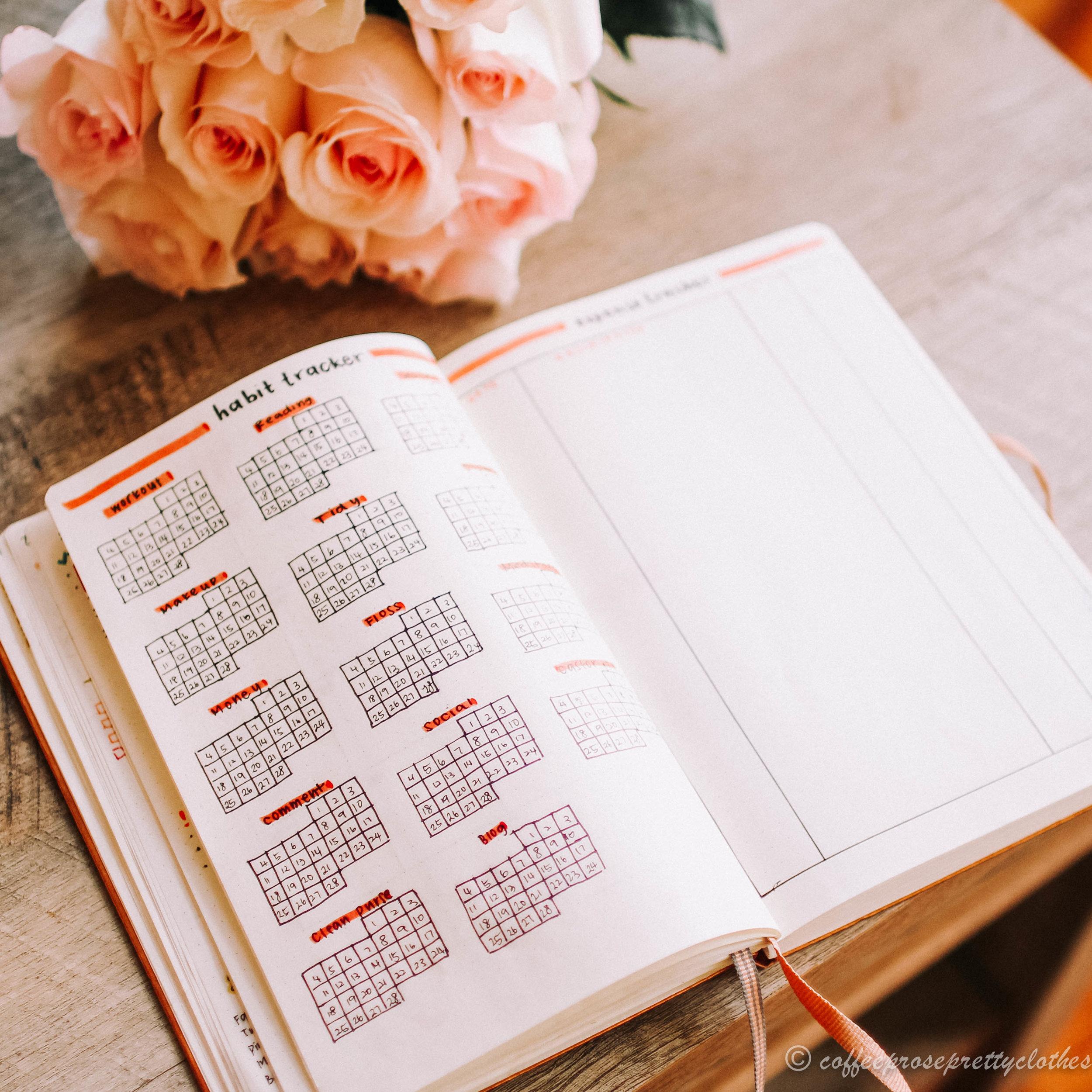 February Bullet Journal Habit Tracker and Expense Tracker