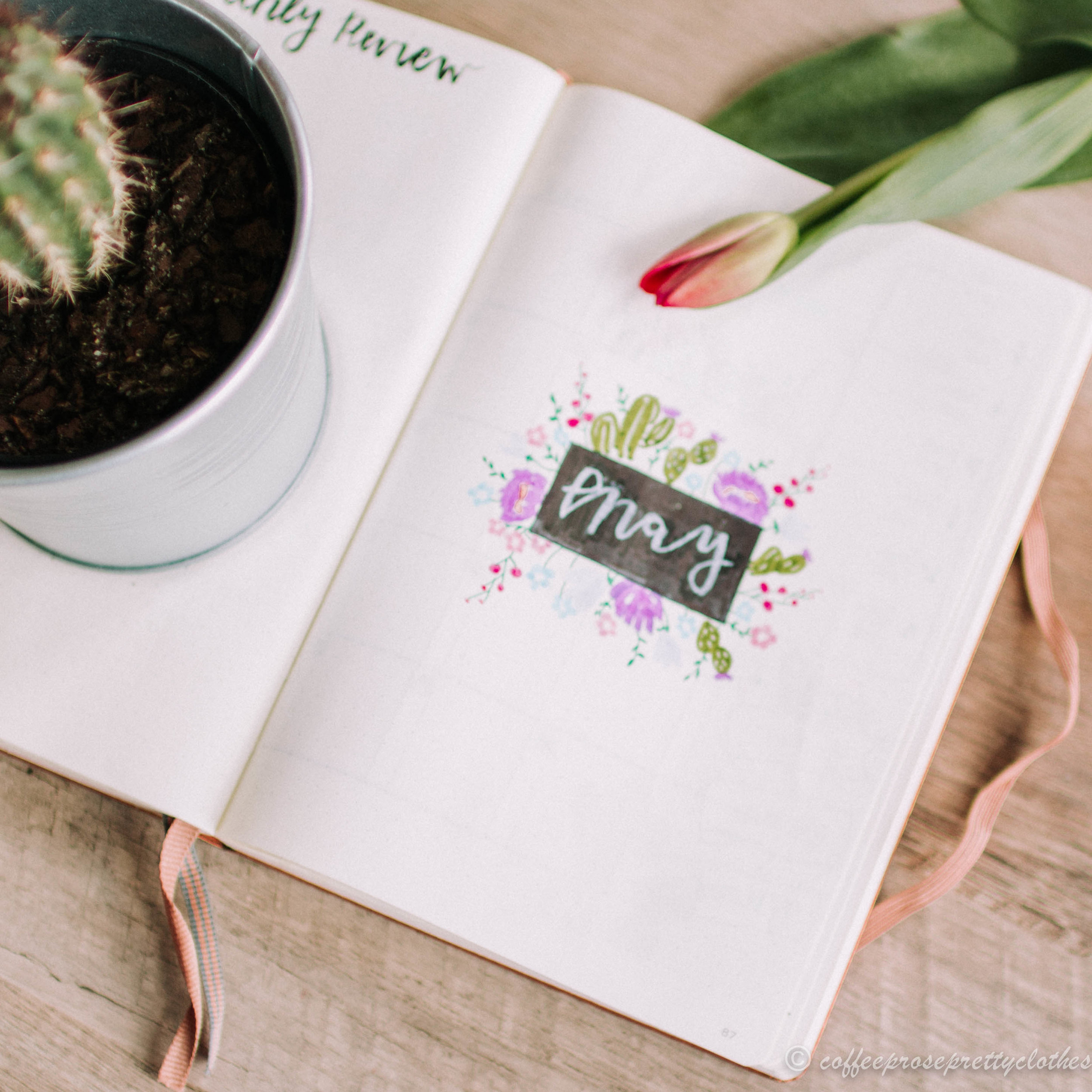 May Bullet journal cactus and flowers theme