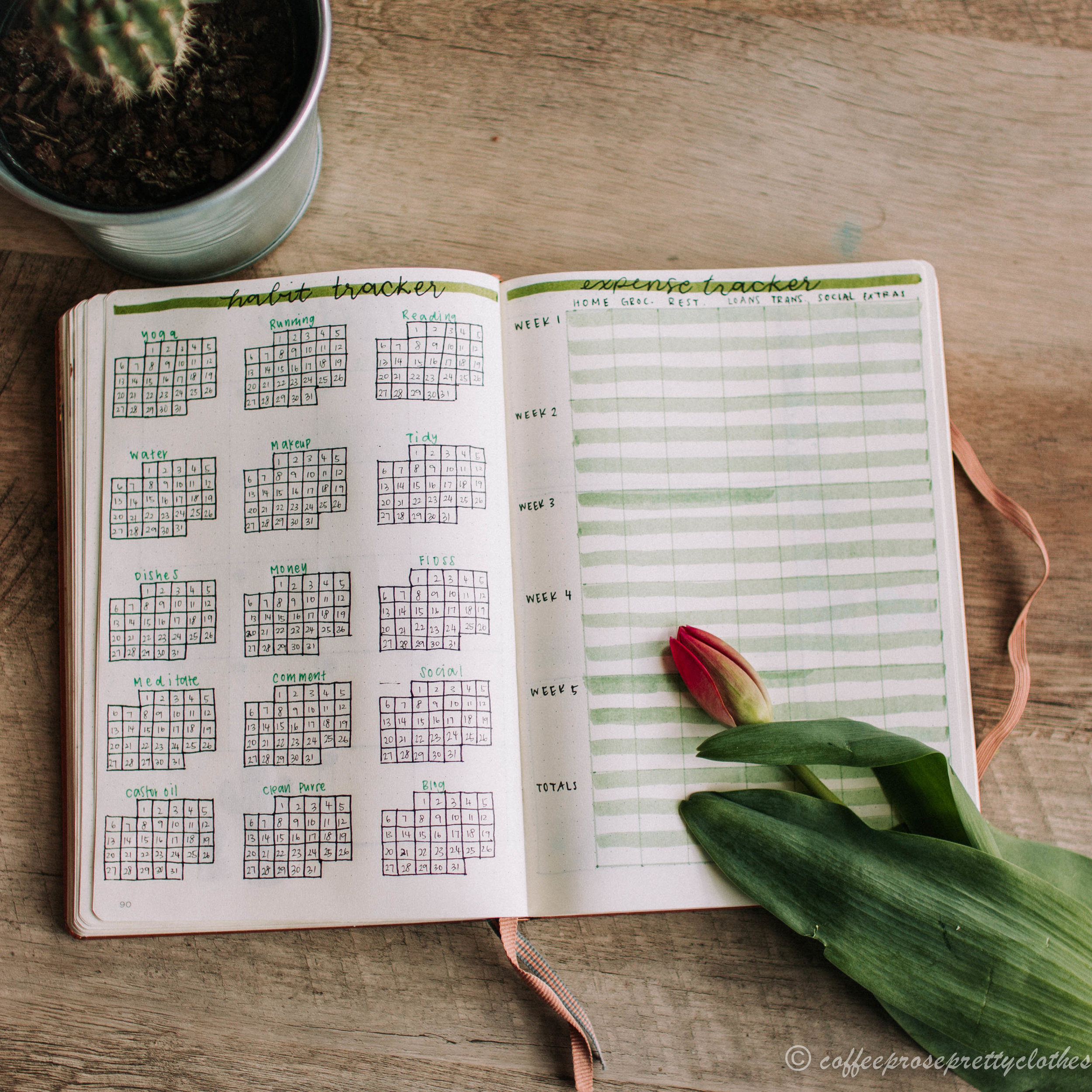 May Bullet Journal Cactus theme