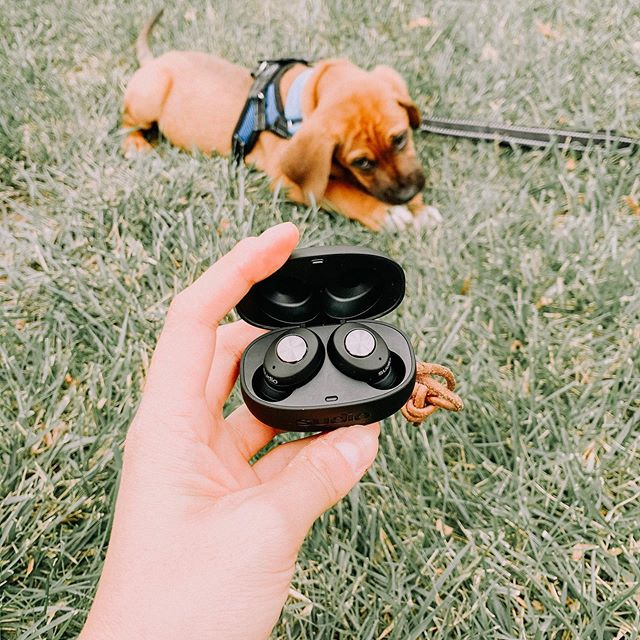 """[ad] I love reading but with a new pup, I only have so much time. Luckily, @sudio has new covered! Their #Tolv headphones are perfect for listening to audibles while I walk Watson! Sudio headphones are simply the best! They even offer """"Sudio Sphere,"""" A 6 month extended warranty on top of their one year guarantee - that's 18 months of coverage! Use code pc15 for a 15% discount on a pair of Sudio headphones! Right now, they'll even throw in a unique and fashionable Giftbox for FREE, taking the hassle out if wrapping gifts this holiday season (it's coming soon guys!) This is only limited while supplies last so hurry! They're seriously great! Whenever I lens these to @briancallahan87, he conveniently """"forgets"""" to give them back 😉 . . . . . . . . . . #headphones #sudio #sudiotolv #wirelessearbuds #tech #dcblogger #dcstyle #instadaily #styleblog #wiw #wiwt #whatiwore #whatiworetoday #igers #fashionblogger #tolv #dailylook #sudiomoments"""