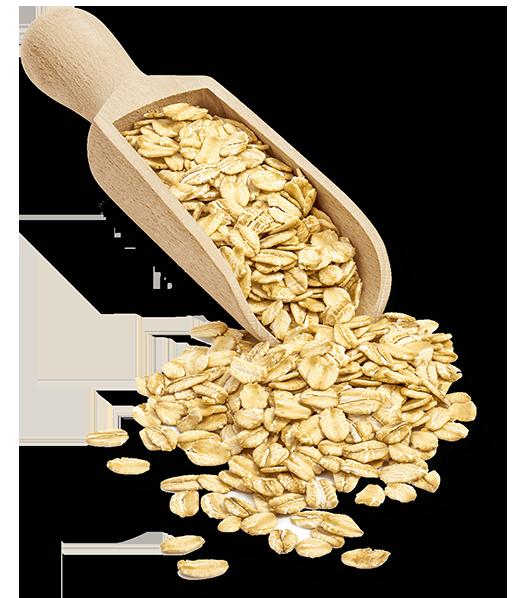 Scoop of oats@2x.png