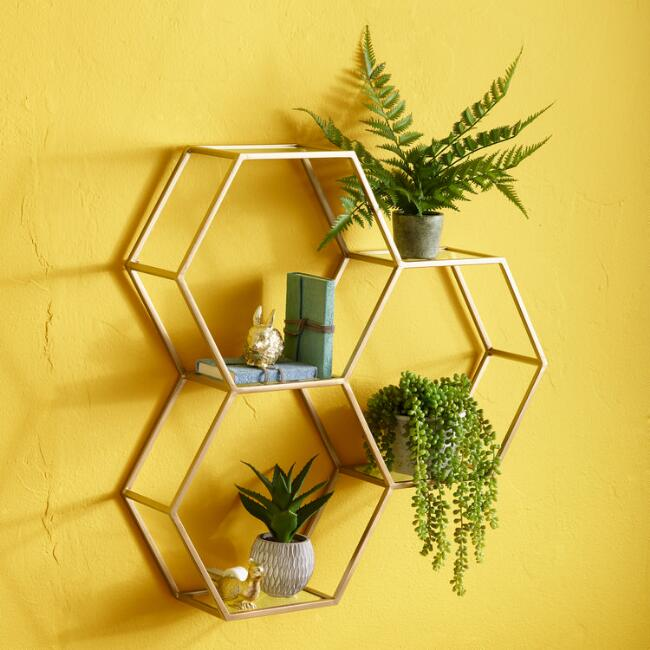 shelf for the adorable succulents