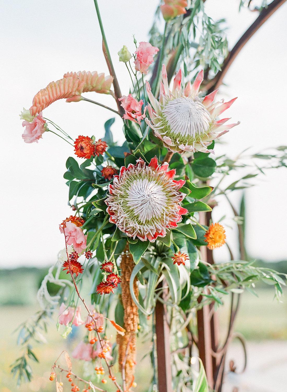 rosehip_flora_meg_wedding_sophie_epton_photography_13.jpg