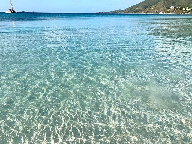 It doesn't get better than this ♥️ 🏝 . . . .  #caribbean #beach #beaches #island #islands #travel #instatravel #travelpics  #thebaths #beautifuldestinations #beautifulplaces #beachlife #islandlife #greatesttravels #britishvirginislands #exploreeverything #virgingorda #holiday #traveltheworld #bvi #worldtraveler #ilovevirgingorda #leverickbay #cocomaya #islandbirds #virgingordavillage #virgingordavillarentals #fatvirgin #speedys #thevillagecafe