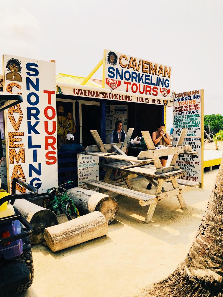 NiteViews x Caveman Snorkeling Tours