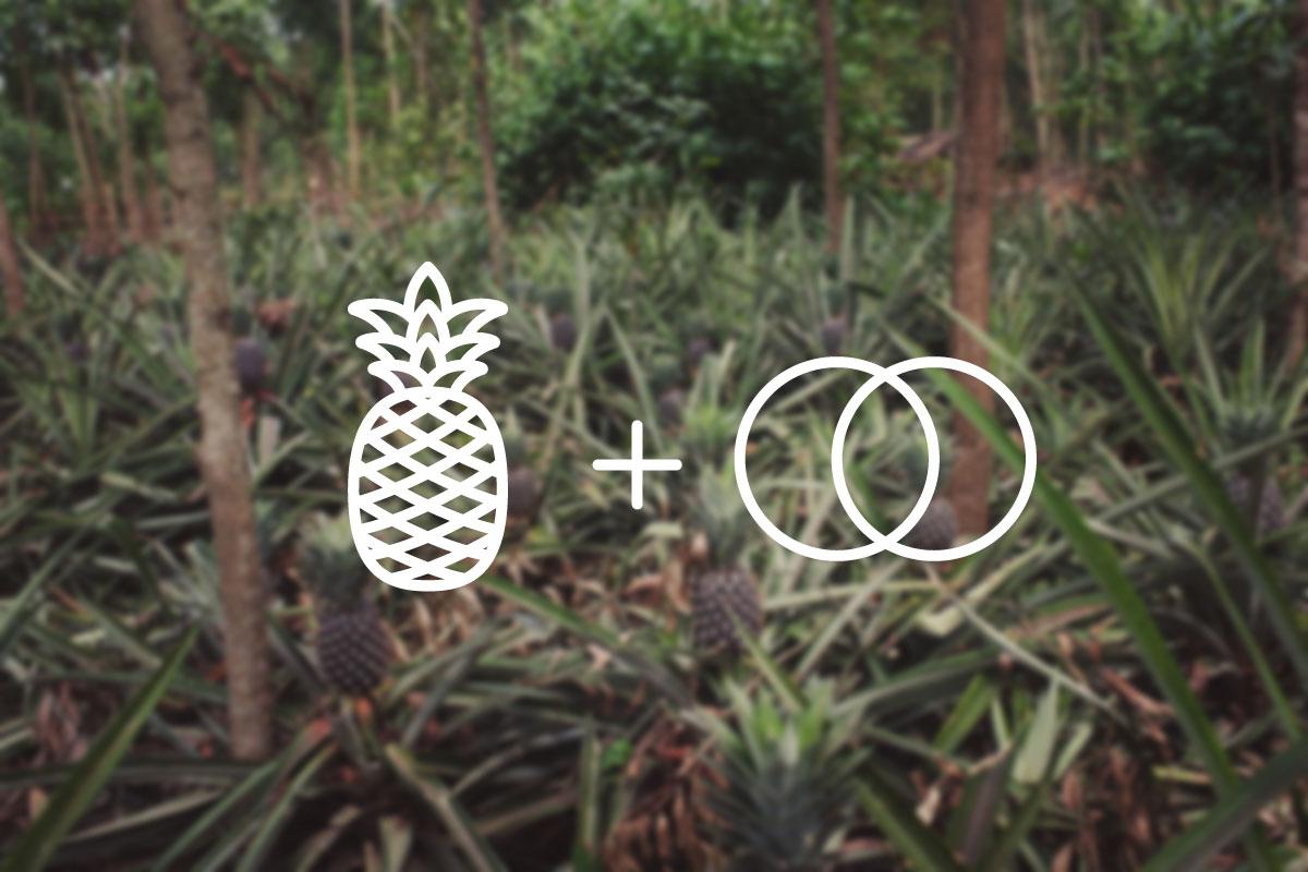 logo_explained.jpg