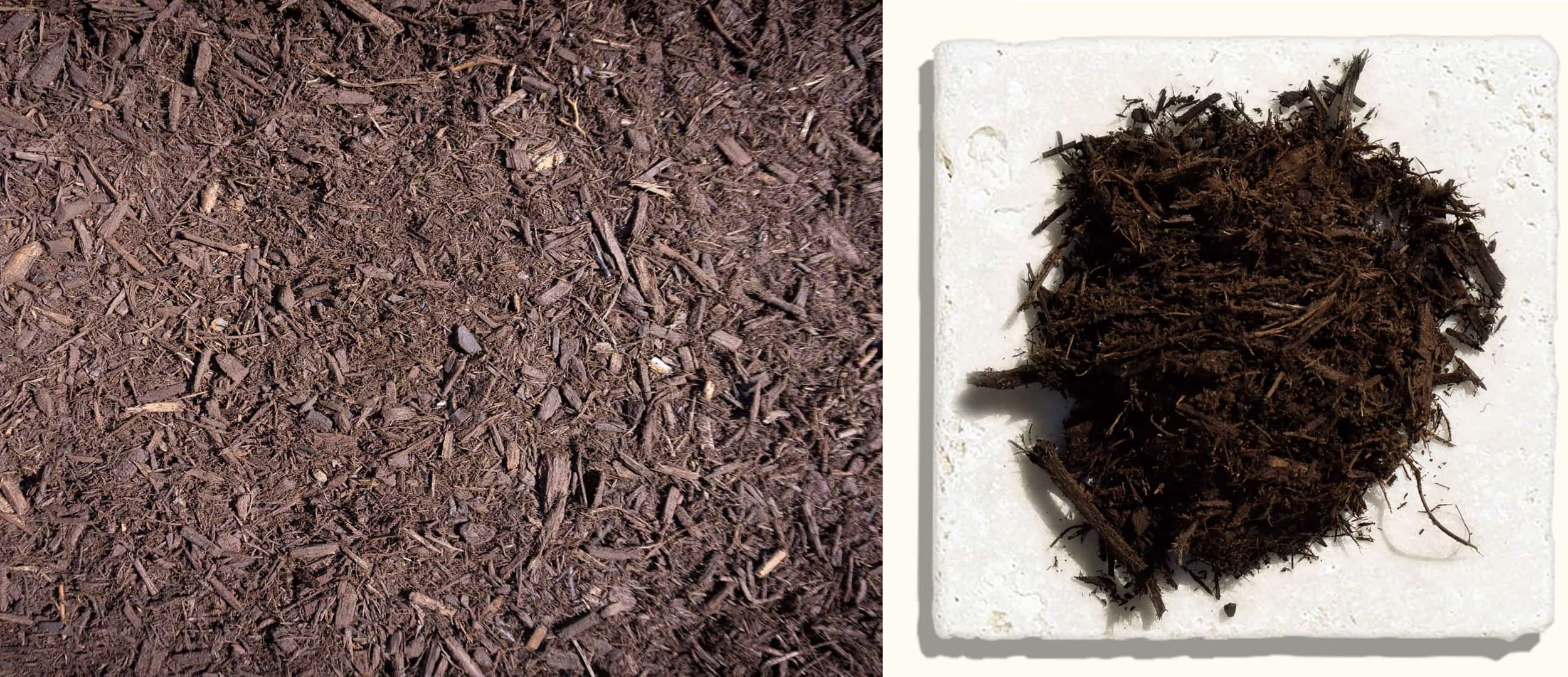 Chocolate Dyed Mulch $35.99 $37.99 $37.99 - We start out with our Double Ground Mulch and enhance it with an environmentally friendly colorant, which turns the mulch a dark brown color giving it a long lasting fresh look for 18-24 months.