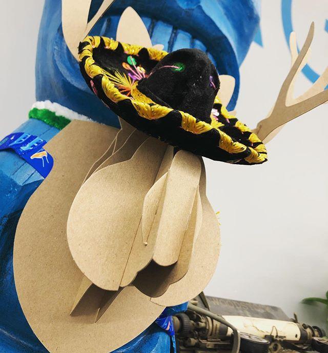 Spotted: A wild flapjackalope celebrating #nationalhatday. . . #hatjackalope #hatsofftoyou