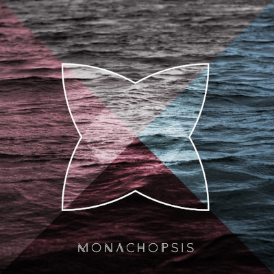 Monachopsis: n. the subtle but persistent feeling of being out of place, as maladapted to your surroundings as a seal on a beach—lumbering, clumsy, easily distracted, huddled in the company of other misfits, unable to recognize the ambient roar of your intended habitat, in which you'd be fluidly, brilliantly, effortlessly at home.