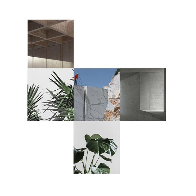New project. Concrete, wood, stone and plants. Mood board. . . . . . #minimalism #architecture #minimalarchitecture