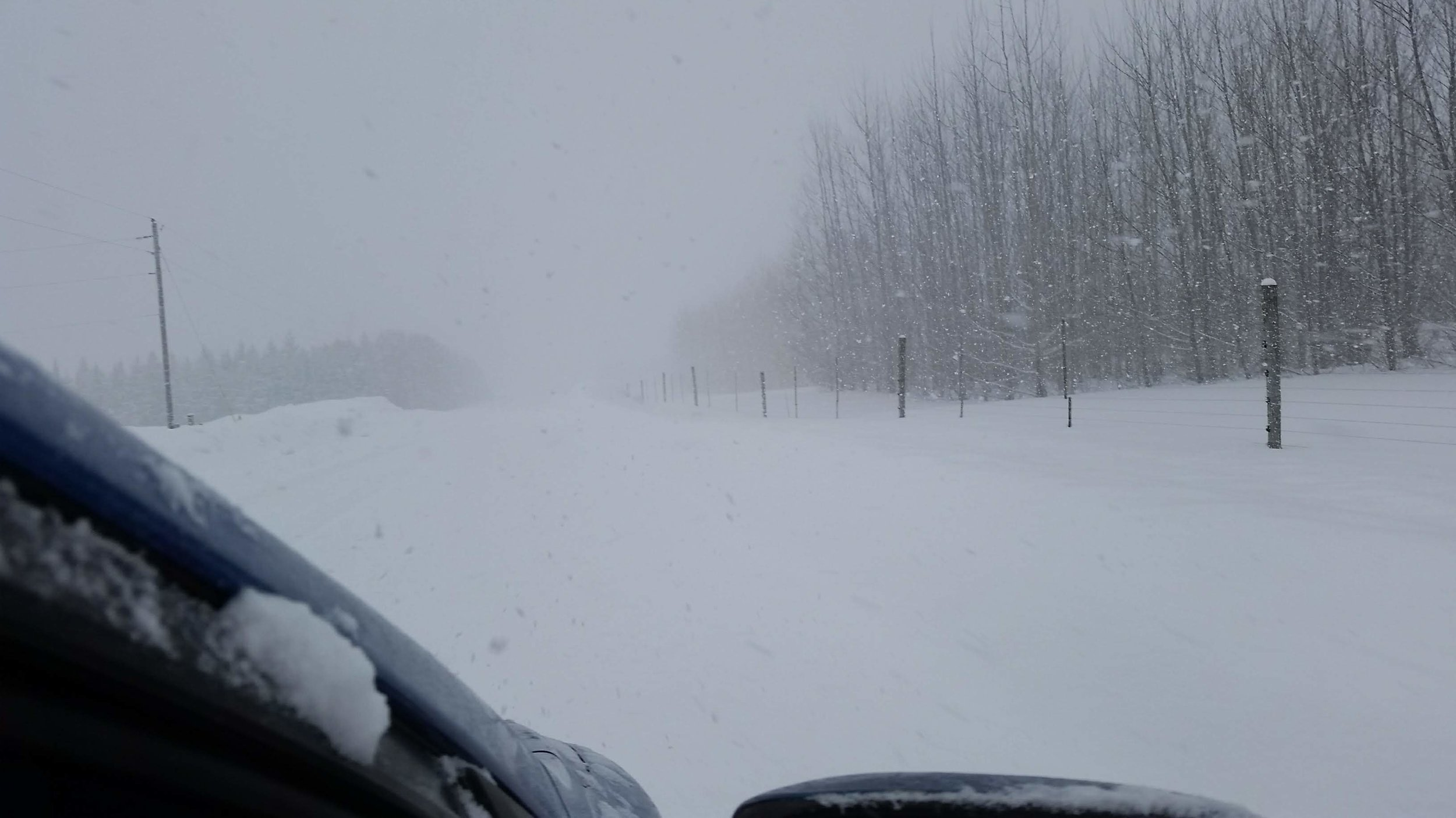 The view (from outside the windshield!) of the road (?) outside our house. Yeah, I don't want to die today.