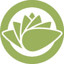 logo-lotus-web-big.png