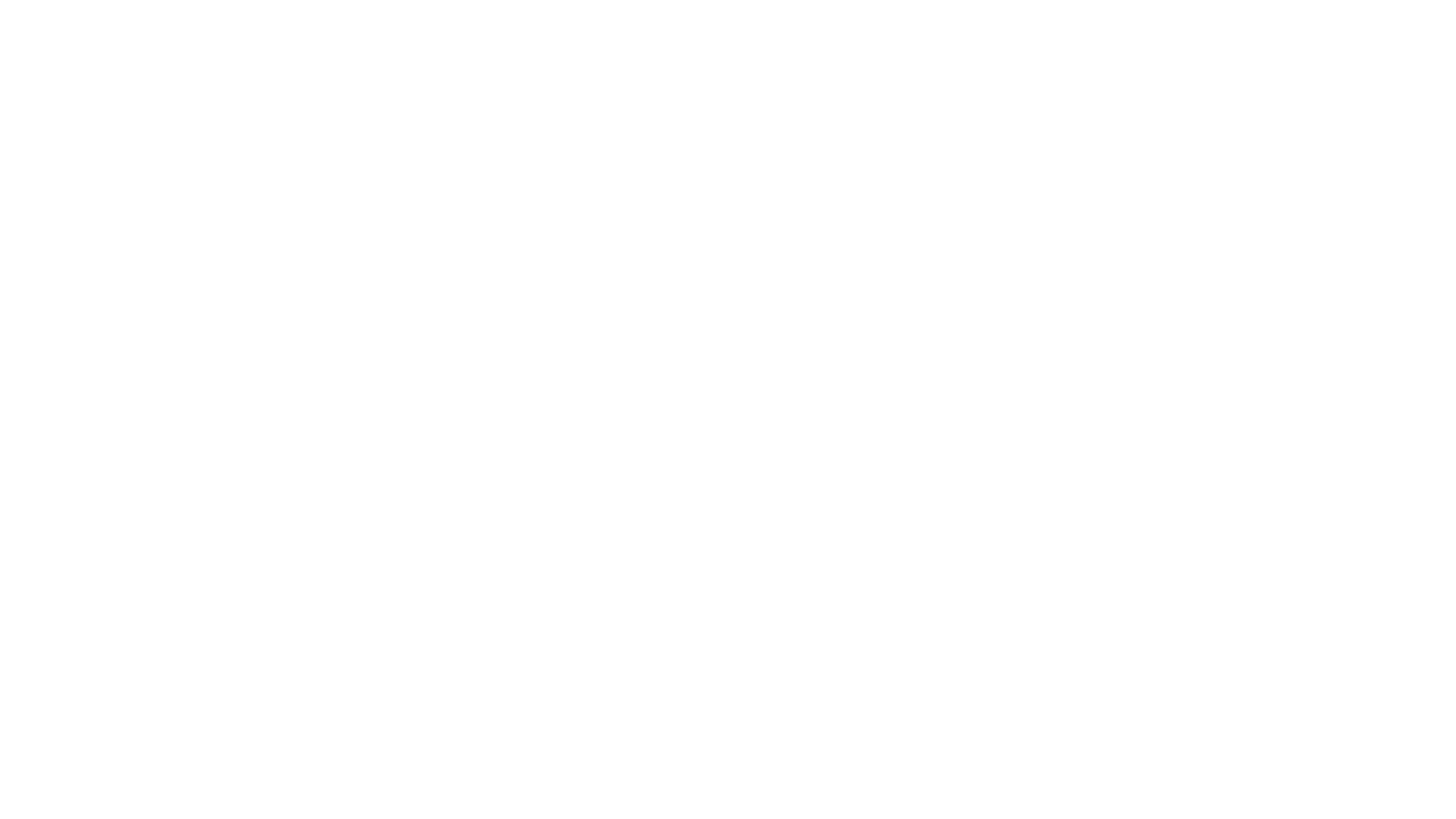 vgk_foundation_white_vgk_foundation.white.png