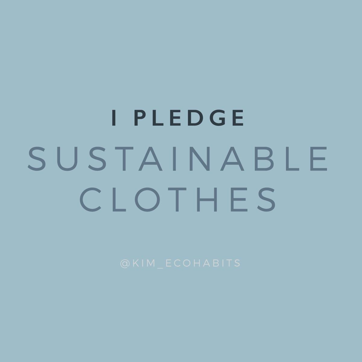 ClothesLESS_Pledge.jpg