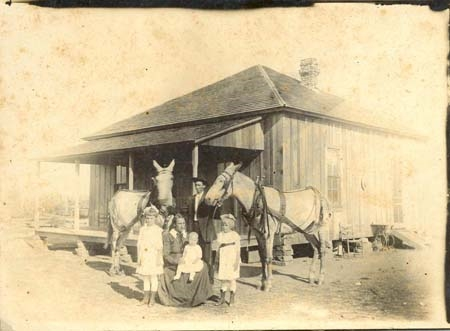 Mom, Grandparents, Grey Mules.jpg