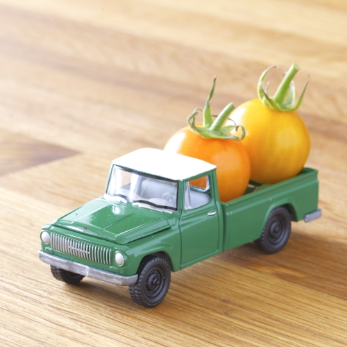 pickup_truck_sungold_tomatoes.jpg