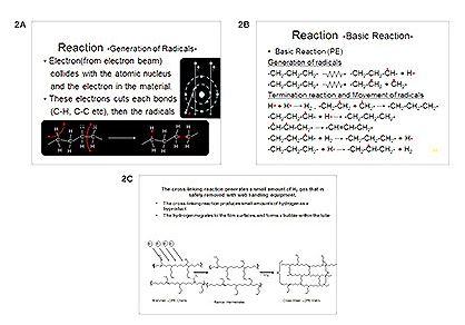 Figure2A2B2C.jpg