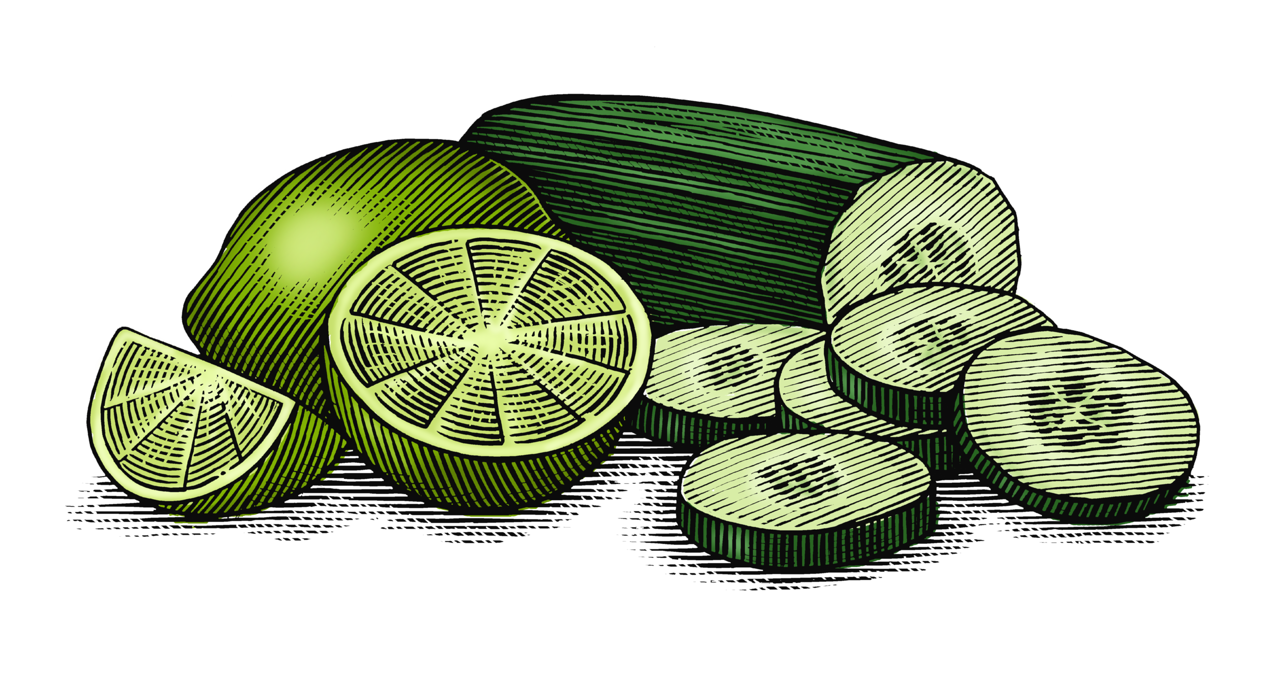 Cucumber_Lime_final_art_layer.png
