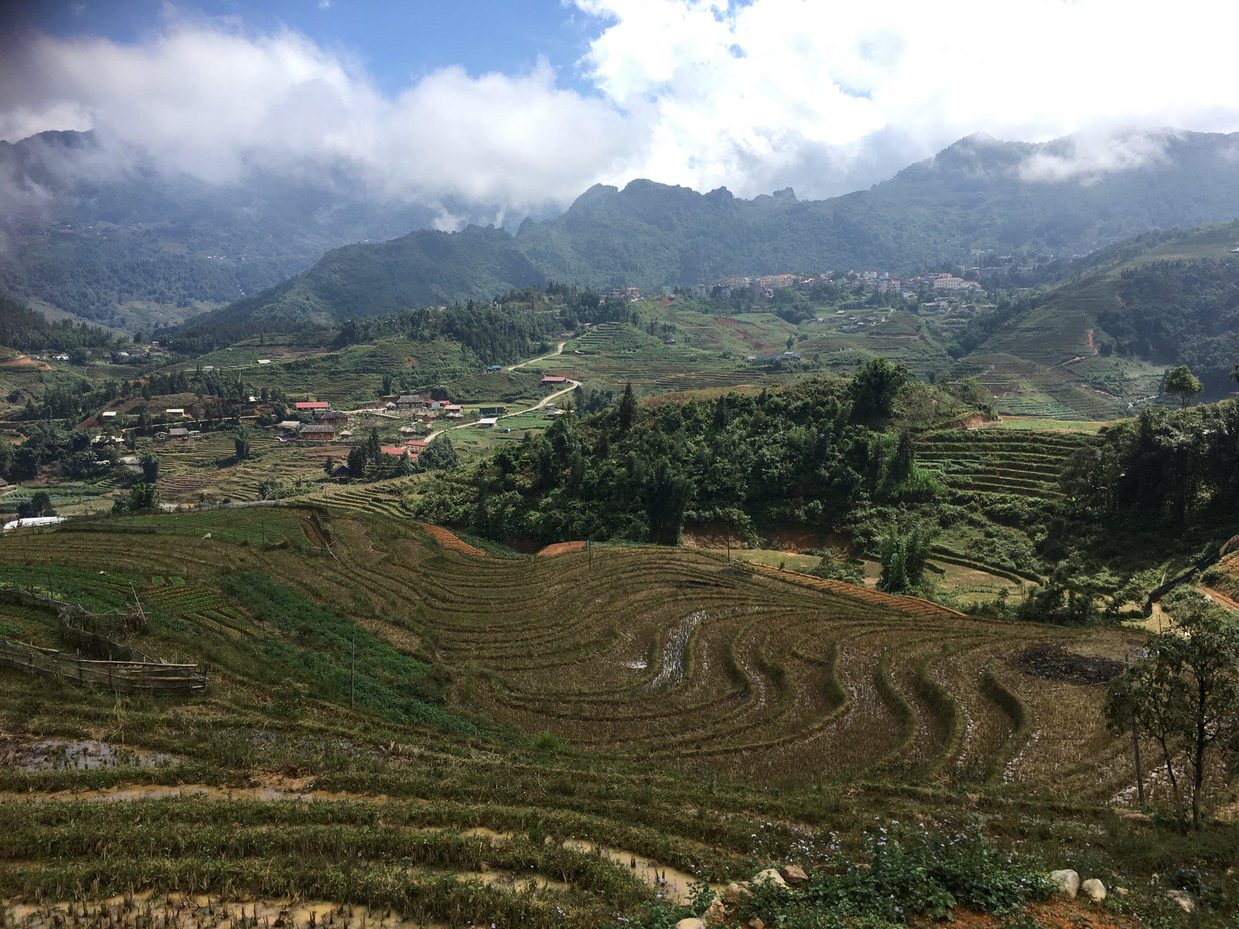 Terraced rice fields around Sapa