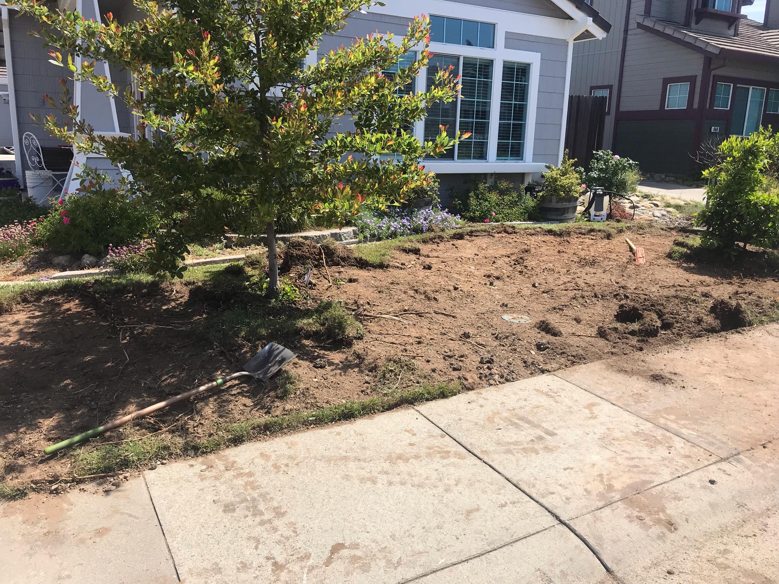 front-yard-landscape-installation-Folsom