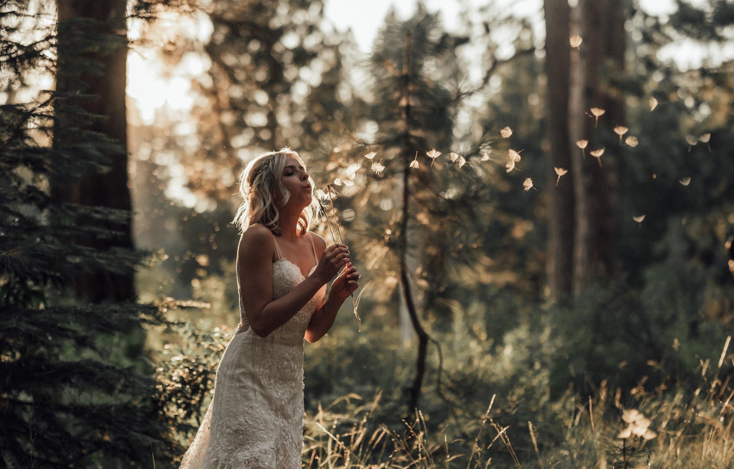 BRIDES, GROOMS -
