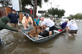 houston flood 07.jpg