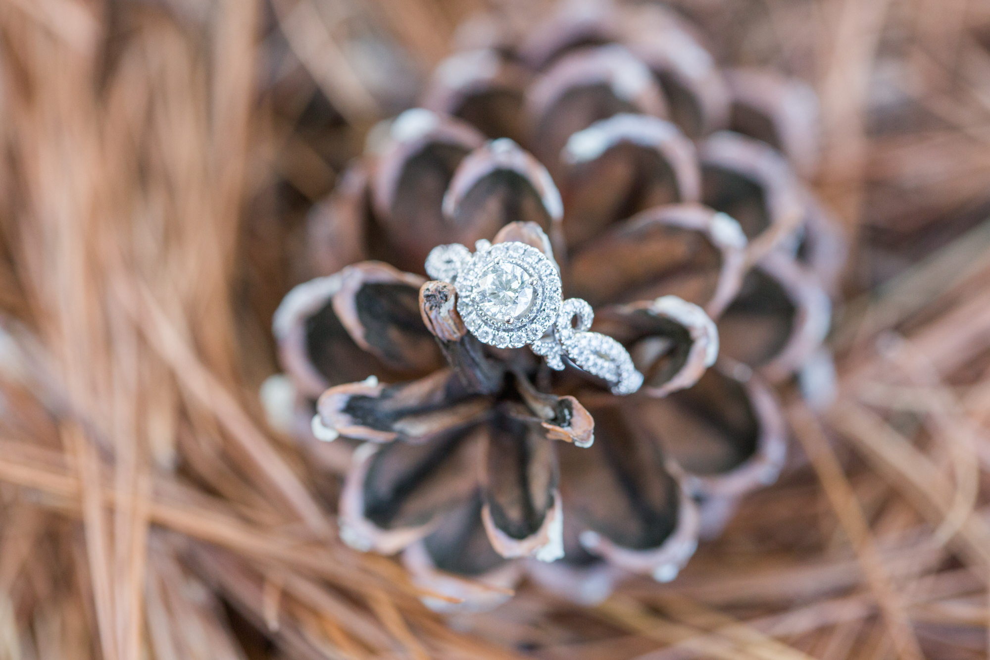 Picking the right Engagement Ring Tips from San Diego Wedding Photographers