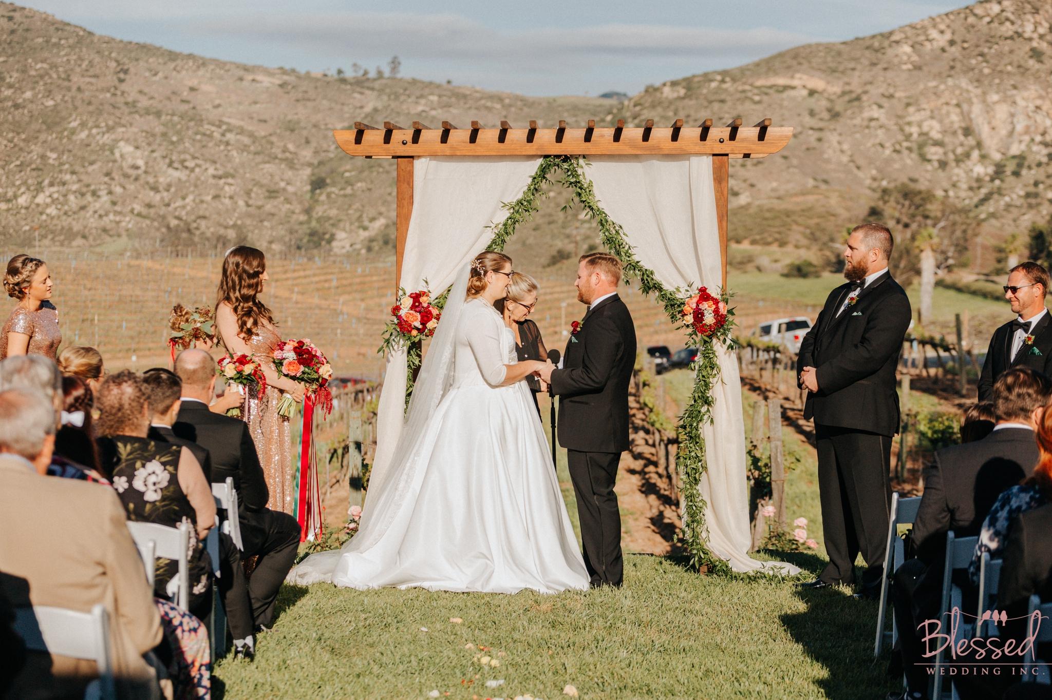 Orfila Vinery Wedding Temecula Wedding Photographer 17.jpg