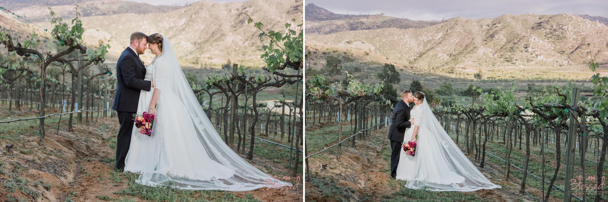 Orfila Vinery Wedding Temecula Wedding Photographer 28.jpg