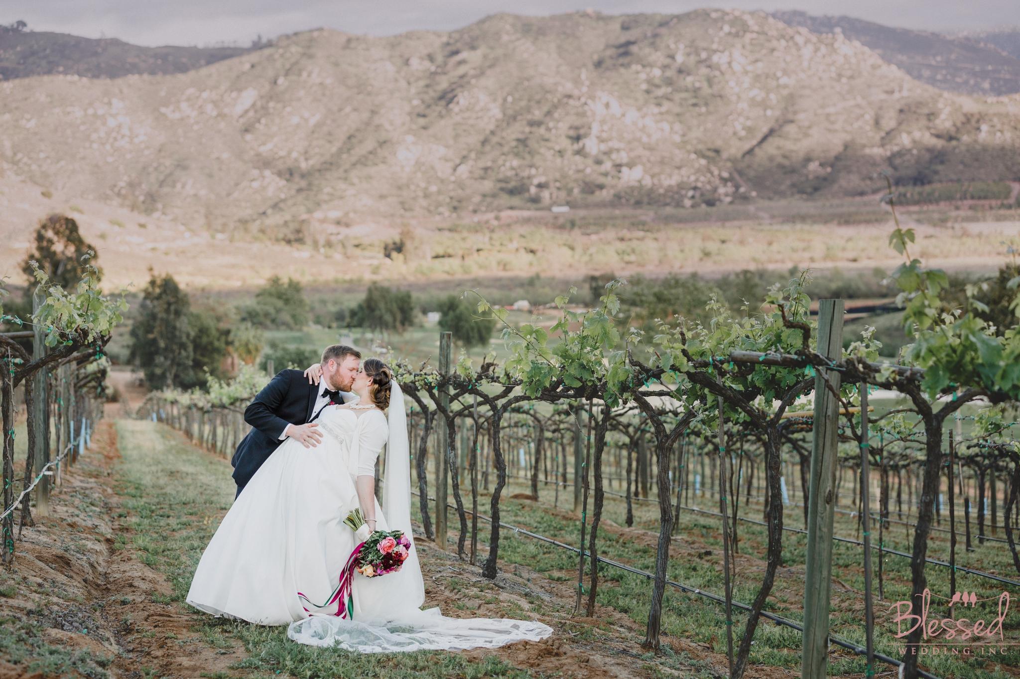 Orfila Vinery Wedding Temecula Wedding Photographer 31.jpg