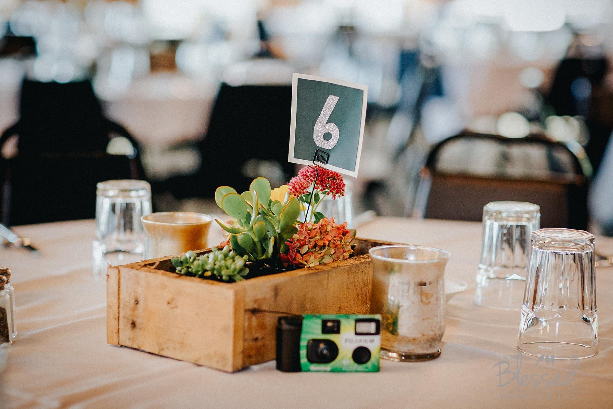 Destination Wedding Photography Minnesota By Blessed Wedding Photographers-37.jpg