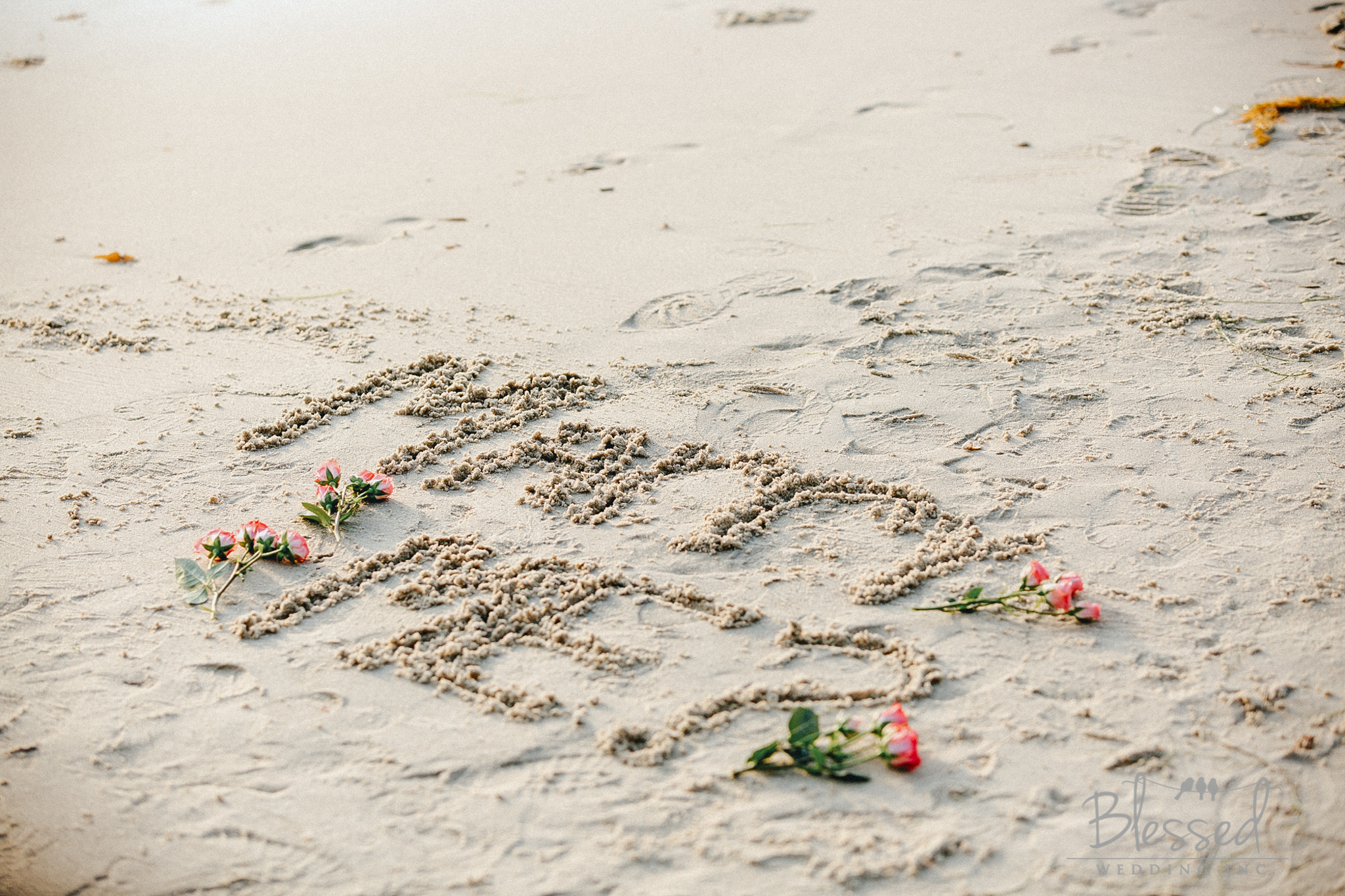 San Diego Engagement Session by San Diego Wedding Photographers Blessed Wedding-8.jpg