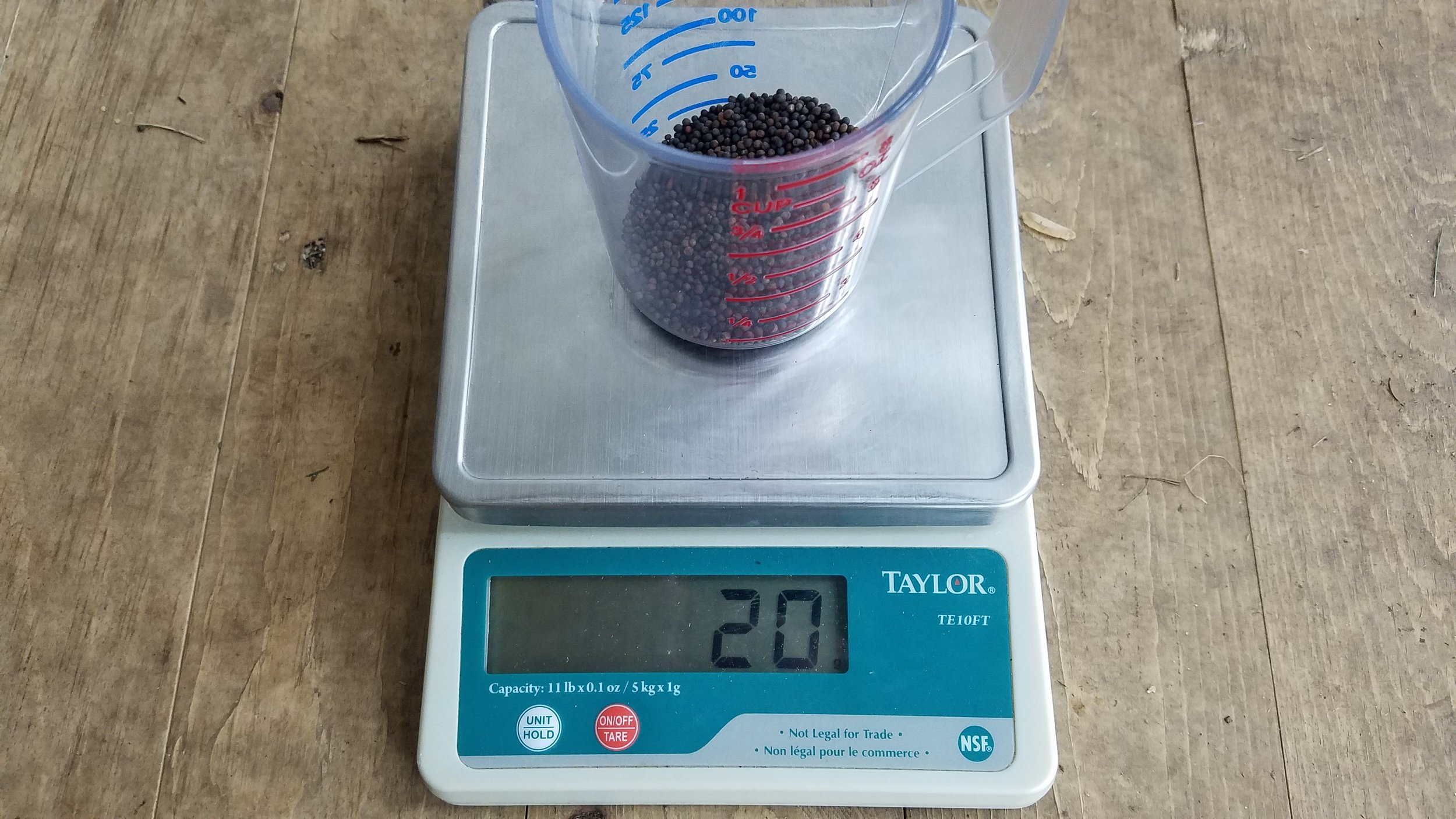 Time to seed! For future reference, your seed weight is 20g.