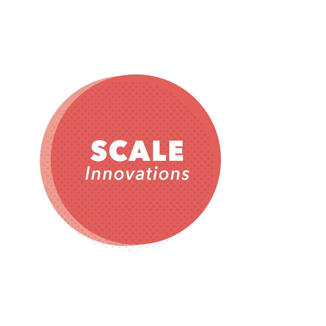 SCALE   Then we work with the most promising innovations to help them achieve scale by leveraging collaborations between networks of schools to the benefit of both the schools and entrepreneurs.