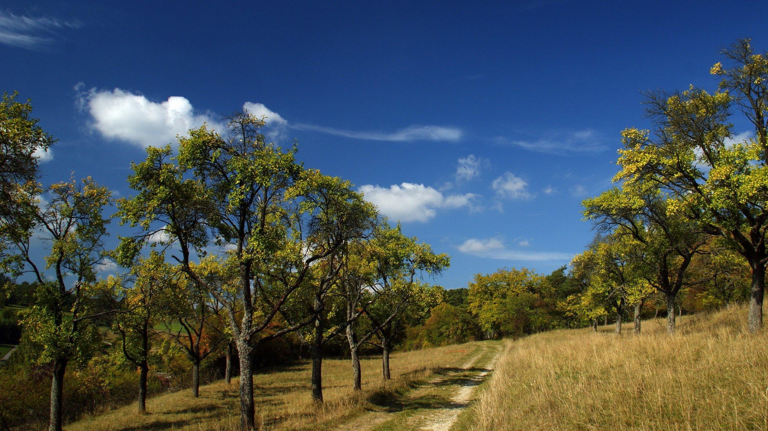 Ultra HD, 4K, Landscape, 35874556.jpg