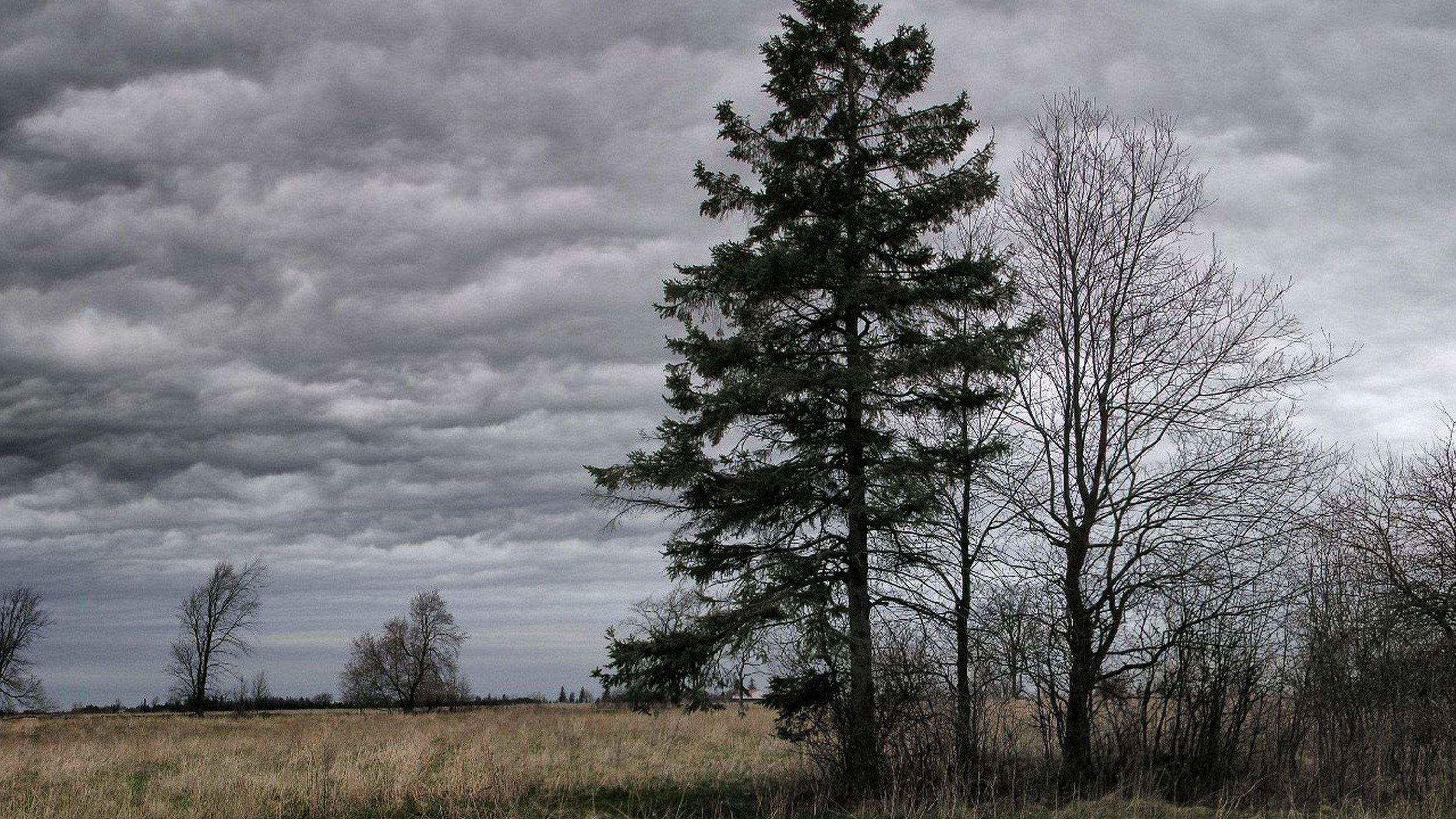 Ultra HD, 4K, Landscape, 87324728.jpg