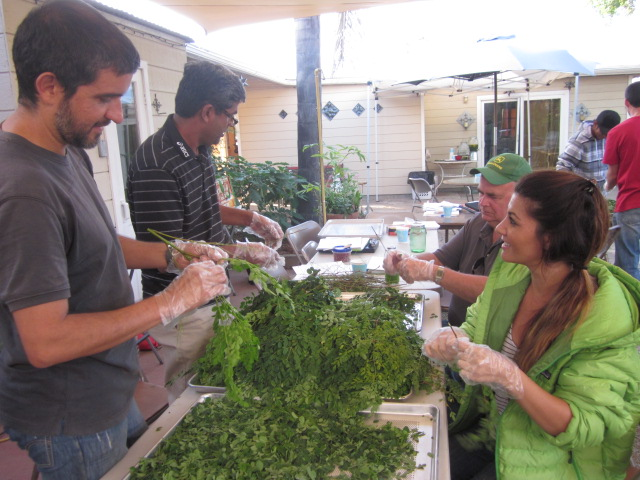 GROWERS AND EDUCATORS COURSE