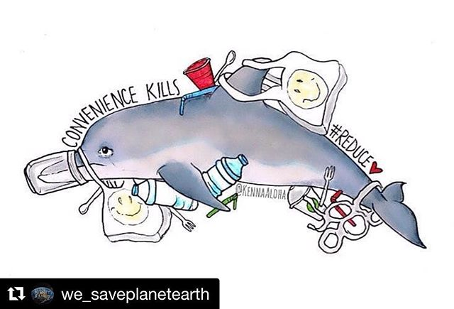 #Repost @we_saveplanetearth with @get_repost ・・・ Did you know? There is more microplastic in the ocean than there are stars in the Milky Way☄!! . Convenience kills. However, we are able to save lives with little effort. . ♻️ Get reusable water bottles 〰️ Refuse plastic straws 🛒 Bring your own shopping bag ❌ Use biodegradable wet wipes 🔸️ Avoid products with microbeads . They 🐋 have 🐟 the 🐠 right 🐙 to 🦀 live 🦈 , 🐡 too!!! . To be free and to be safe!!! . 📸 @kennaaloha . ••••••••••••••••••••••••••••••••••••⠀ . #zerowaste #zerowastelifestyle #plastickills #stopplasticnow #avoidplastic #saveourdolphins #dolphin #noplastic #plasticfree #art #zerowasteliving #plasticpollution #plasticplanet #govegan #veganfortheplanet #environment #environmentalist #lesswaste #saveearth #waronwaste #climatechange #saveouroceans #rivers #pollution #change #plastic #weloveplanetearth #wesaveplanetearth