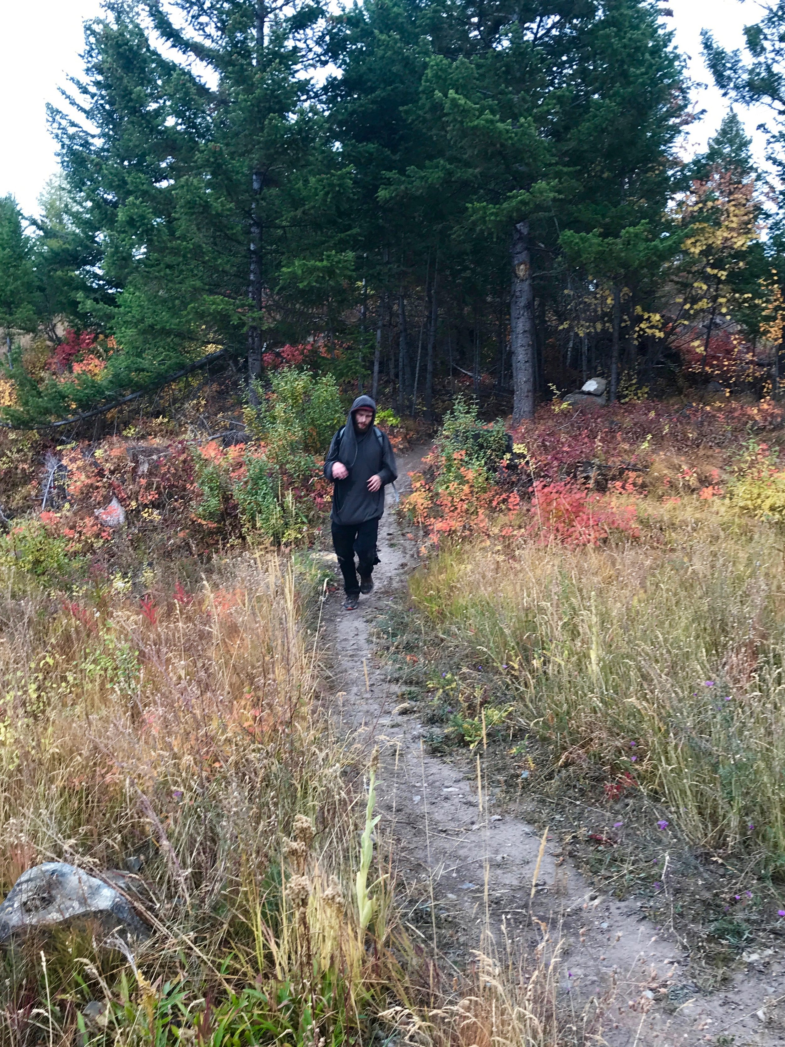 foys to blacktail trails trail marathon ftbtIMG_1757.JPG