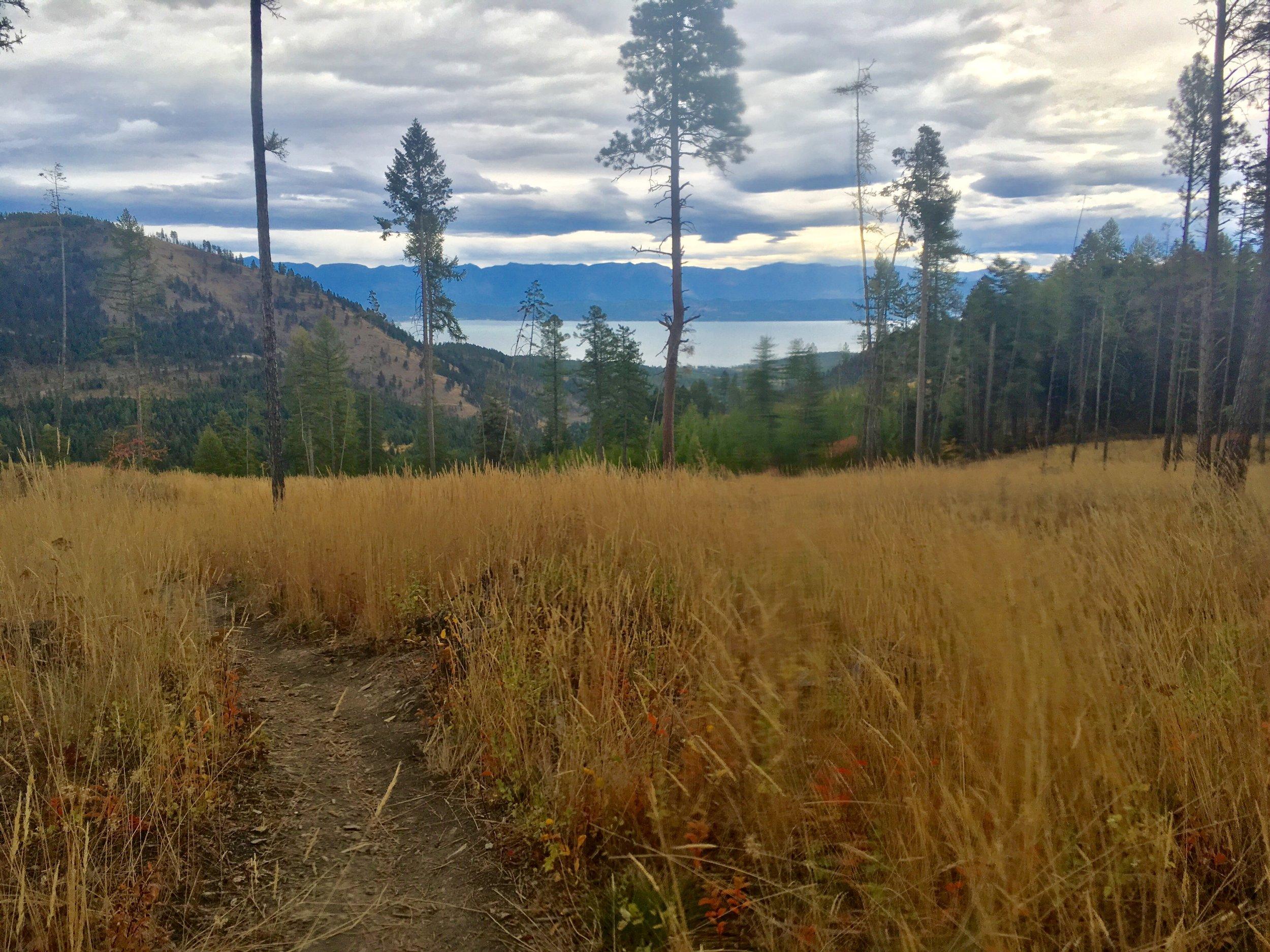 foys to blacktail trails trail marathon ftbtIMG_1720.JPG