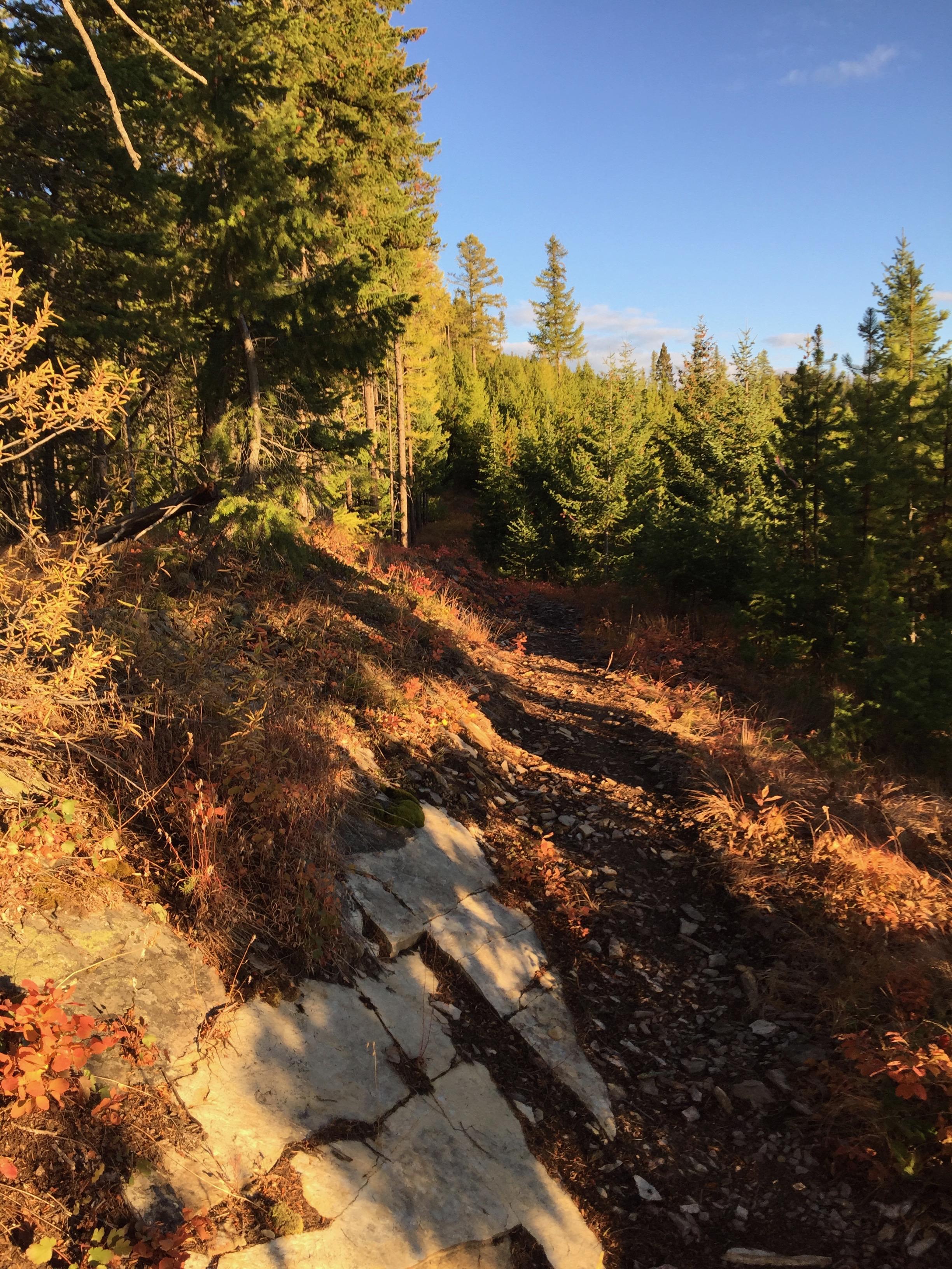foys to blacktail trails trail marathon ftbtIMG_1038.JPG
