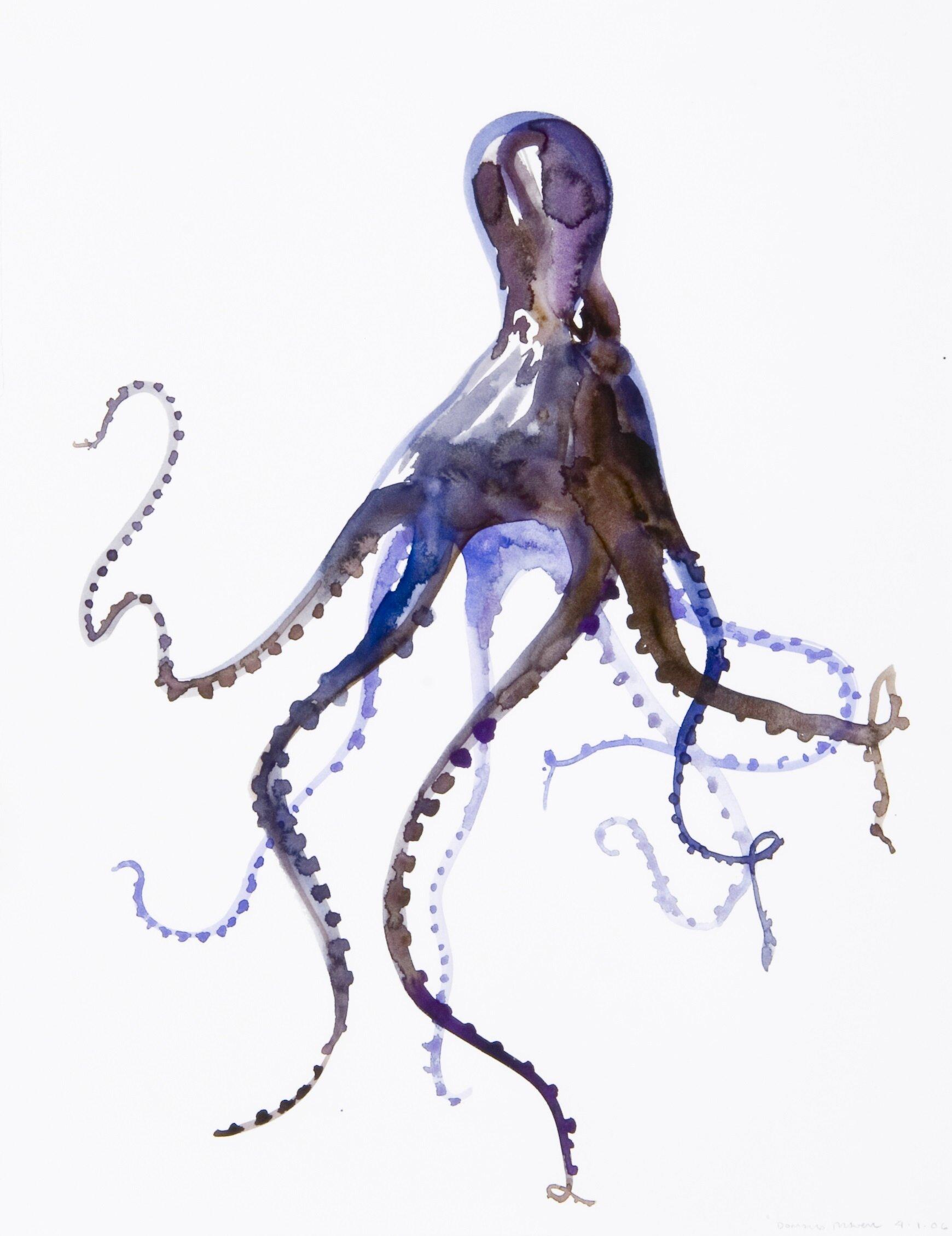 Octopus09.jpg