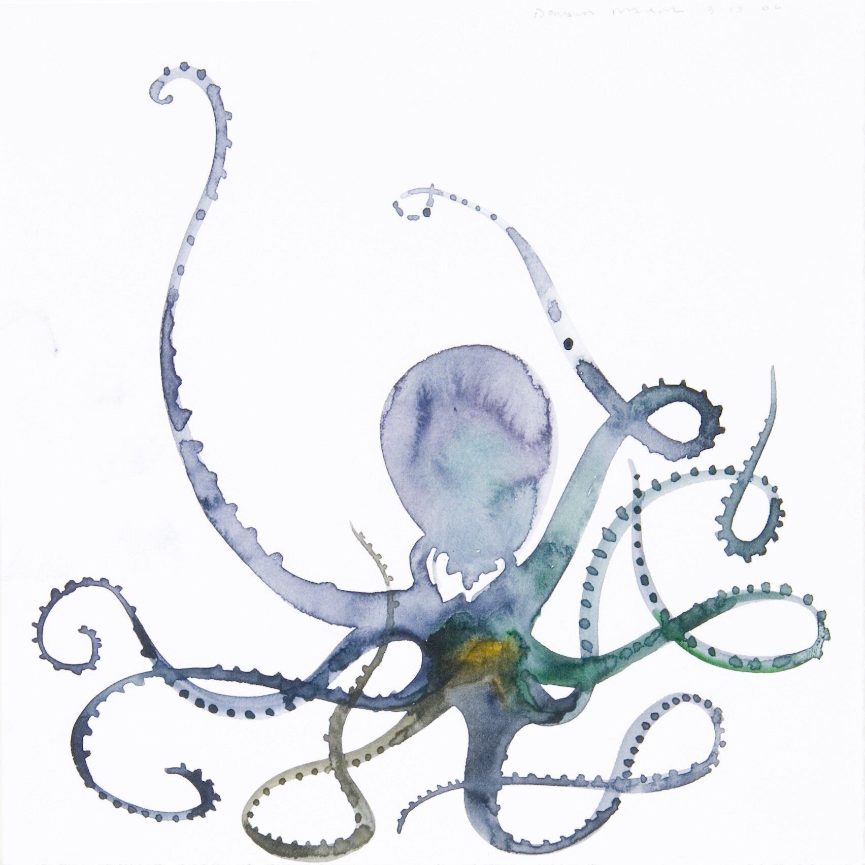 Octopus16.jpg