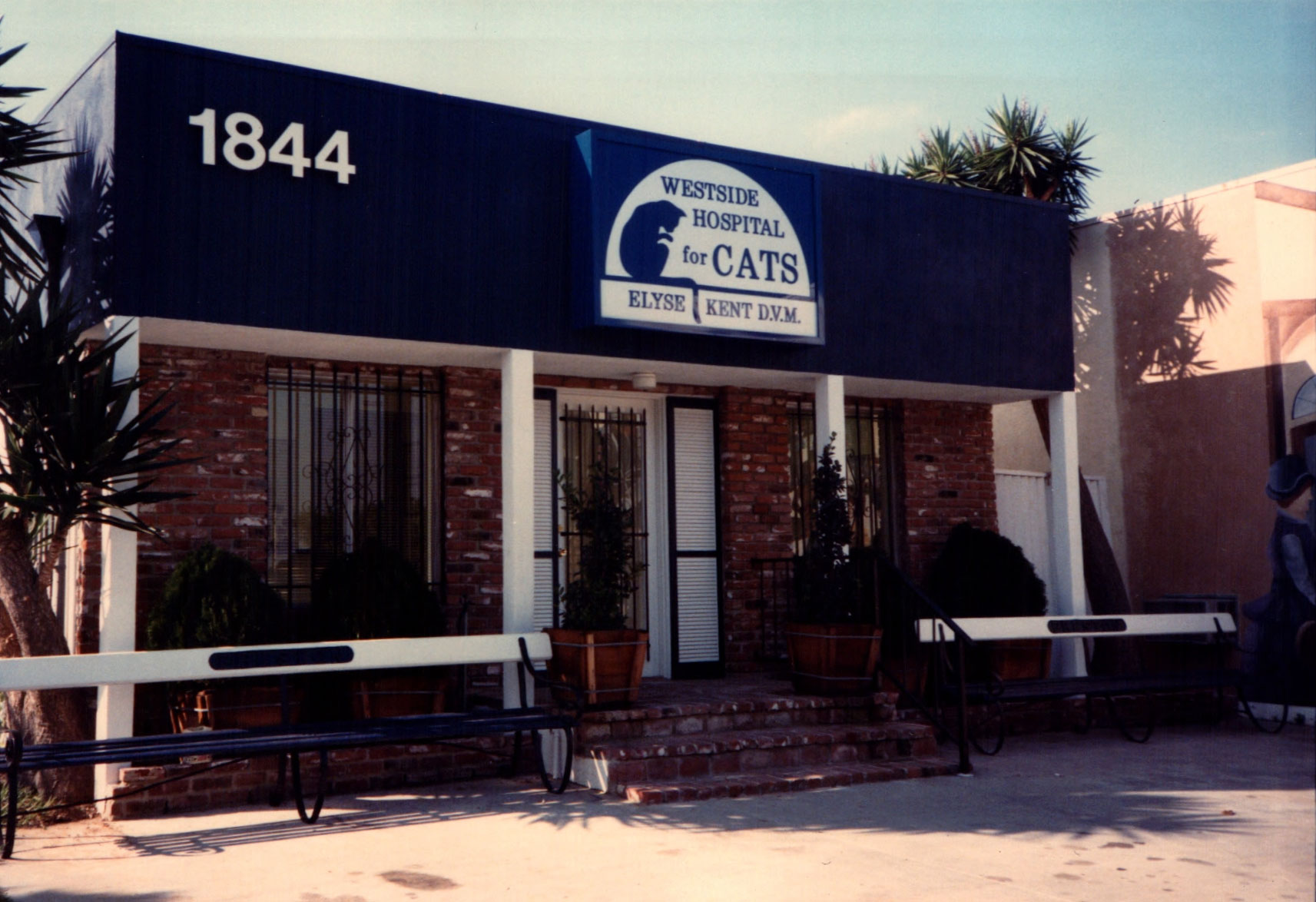 My first practice opened in 1985 on 14th Street and Pico in Santa Monica, California.