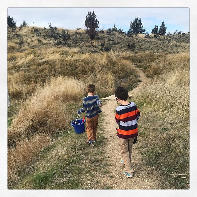 Fossil Hunting  #life_adventuring #boymom #brothers #bestfriendsforlife #johnday #fossils #fossilhunting #centraloregon #centraloregonlife #exploreoutdoors #outdoorfun #adventureswithkids #exploringwithkids