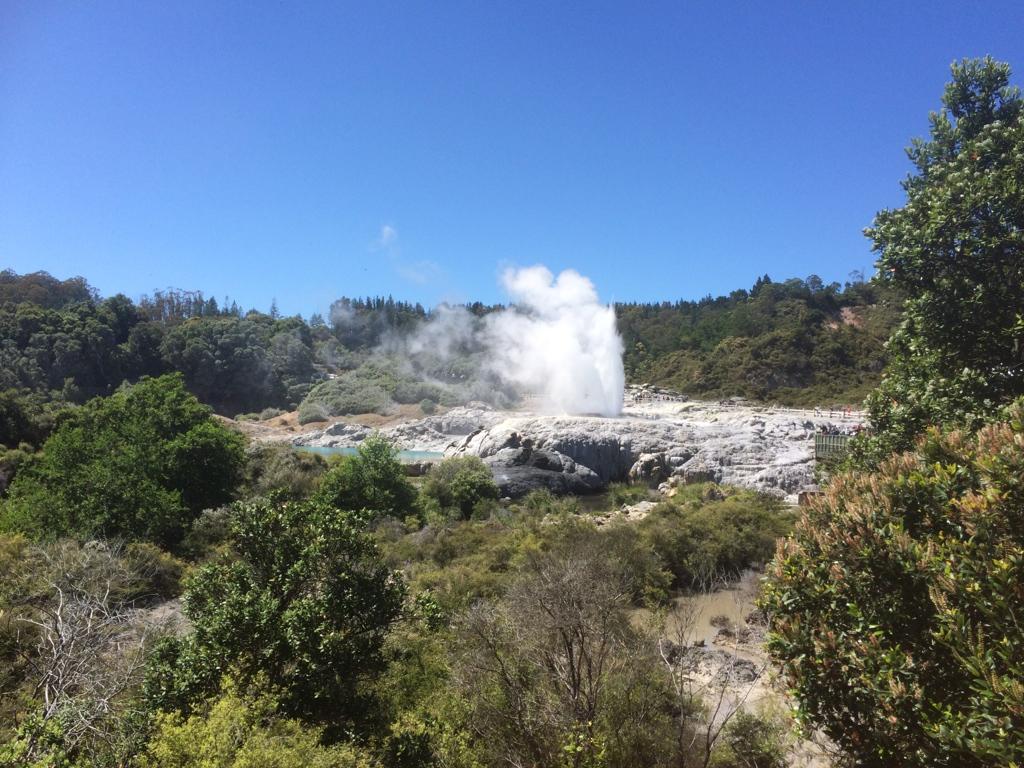 Rotorua's geothermal wonders