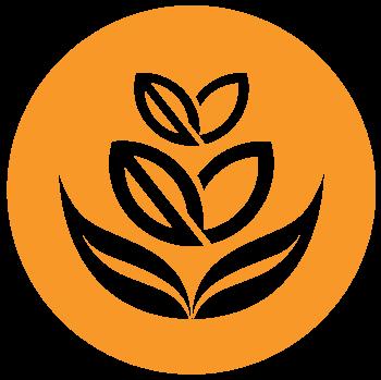 logo-notext.png